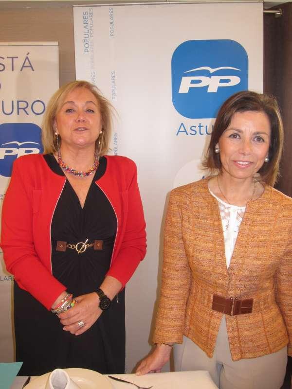 Fernández (PP) opina que su partido está