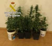 Detenidas tres personas en Lanzarote al ser pillados con más de dos kilos de marihuana en su vehículo