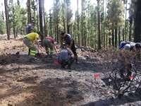 Agentes de Seguridad y Emergencias aprenden a investigar las causas de un incendio forestal
