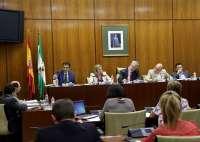 El Parlamento abonará gastos de desplazamiento y manutención a agentes sociales que comparezcan sobre proyectos de ley