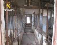 La Guardia Civil presenta 40 denuncias contra el propietario de un centro de cría clandestino en Burgos
