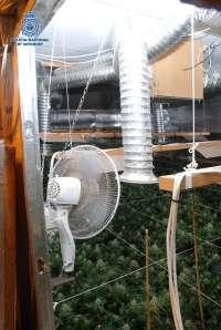 Desmantelan un invernadero de marihuana en un chalé de lujo en Mijas y detienen a sus dos inquilinos