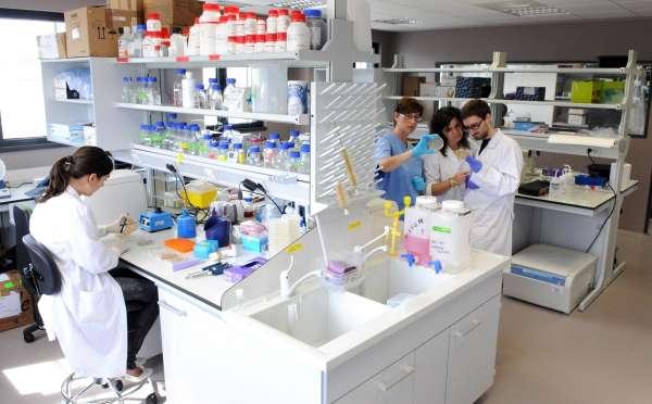 El Foro de Investigación Biomédica del IBBTEC y el IDIVAL ha acogido este curso 24 seminarios especializados