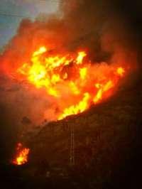 Gobernación decreta la preemergencia nivel 3 por riesgo de incendios forestales en toda la Comunitat