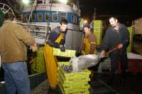 El Fogaiba destina 241.000 euros en ayudas a las cofradías de pescadores