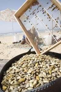 La Junta pone en marcha este sábado en Doñana la campaña 'Disfruta de la playa sin mariscar. SOS coquinas'