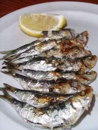 Foro acusa al Gobierno de perjudicar nuevamente al sector pesquero asturiano con el plan de la sardina