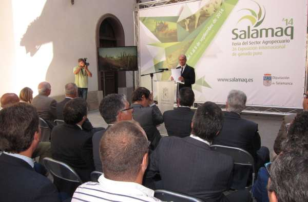 Salamaq 2014 abrirá sus puertas este jueves con 530 expositores  y 2.300 cabezas de ganado