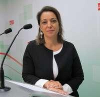 Ambrosio (PSOE) afirma que Nieto (PP) lo único que ha hecho es