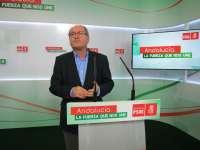 PSOE-A solo contemplaría pactos tras autonómicas con IU-CA, a quien aconseja que