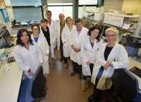 La UV desarrolla softwares para encontrar dianas terapéuticas contra los tumores infantiles neuroblásticos