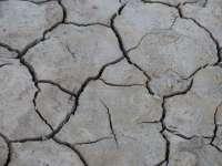 La Unió cifra en 500 millones las pérdidas en el campo por sequía y pedriscos en 2014