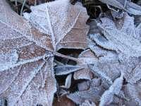 Euskadi seguirá con temperaturas mínimas y heladas este jueves y viernes