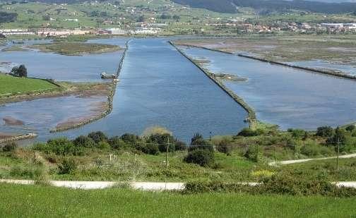 SEO/BirdLife identifica cuatro áreas degradadas en Cantabria que necesitan una