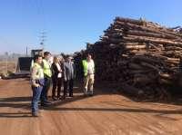 Junta destaca que el desarrollo del sector energético de biomasa en Andalucía ha creado cerca de mil empleos