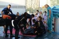 Médicos del Hospital La Fe practican una broncoscopia a un delfín del Oceanogràfic