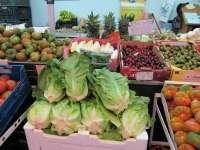 Medio centenar de empresas murcianas participan en la feria Fruit Logistica