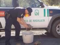 Policía Autonómica descubre una docena de yacimientos arqueológicos durante labores de prevención de expolios