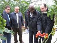 La Embajada de Kenia muestra su interés por el modelo de producción hortícola de Almería en una visita