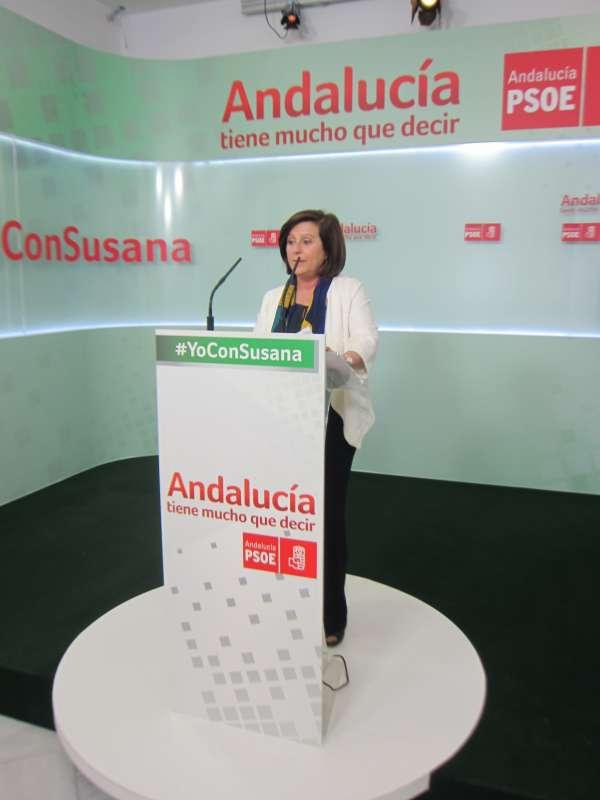 Sánchez Rubio rechaza