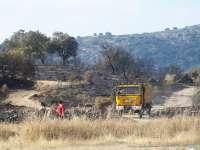 La Guardia Civil ha detenido a diez personas por incendios forestales en Cáceres en lo que va de año