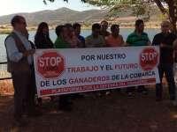 Los ganaderos de Valle de Alcudia se concentran contra la posible introducción artificial del lobo en su comarca