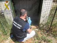 Sucesos.- La Guardia Civil imputa a dos personas por robar 145 contadores de riego de casetas de campo