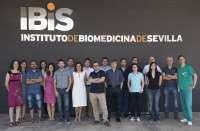 Un consorcio liderado por IBIS halla en modelos animales una opción terapéutica para niños con sarcoma de Ewing
