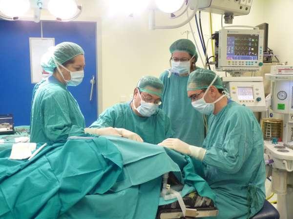 El CES pide una norma para garantizar como derecho unos tiempos máximos de espera para consultas, pruebas y cirugías