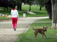 El Ayuntamiento de León pone en marcha una campaña contra el abandono de animales y a favor de la adopción
