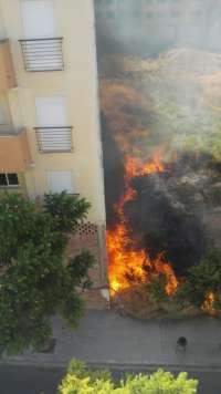Vecinos de Lucena piden medidas tras registrarse cinco incendios en parcelas sin edificar