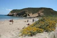 Los puestos de vigilancia de playas abren con bandera verde, excepto playa de Zeus en La Manga
