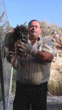 Agentes de Medio Ambiente rescatan un ejemplar de búho real que había caído a una balsa de riego en Alhama