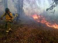Incendios.- AMPL.- Estabilizado el incendio forestal de Zalamea la Real