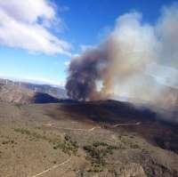 Junta invertirá 150.000 euros en restaurar 34,5 hectáreas de Sierra de Gádor tras el incendio del pasado año