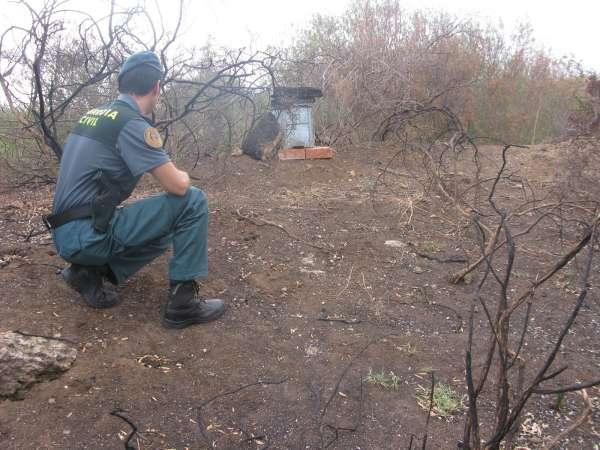 Sucesos.- Imputado el presunto autor de un incendio forestal declarado en mayo en San Roque