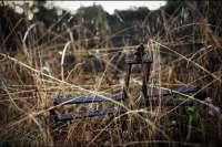 Memoria.- Comienzan este martes en Zalamea los trabajos para exhumar los restos de un anarquista fusilado