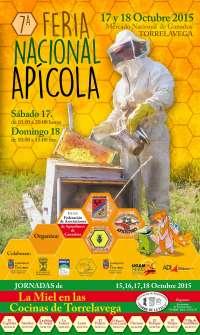 EL MNG acogerá este fin de semana la VII Feria Nacional Apícola, con más de 40 expositores