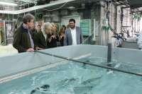 El Govern creará la Reserva marina del Freu de sa Dragonera y regulará las actividades subacuáticas