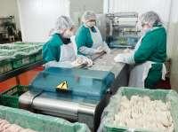Caen un 26% las sociedades mercantiles creadas en octubre en Galicia