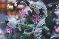 Expertos aconsejan afrontar de forma progresiva la primera Navidad tras la pérdida de un ser querido