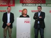20D.-PSOE asegura que la provincia tiene