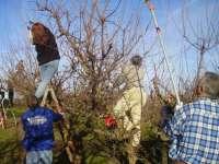 La Junta de Extremadura y la Unión Europea forman a 7.900 profesionales agrarios hacia una agricultura