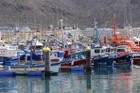 La pesca desembarcada en Asturias en enero, un 28,3% menos que hace un año
