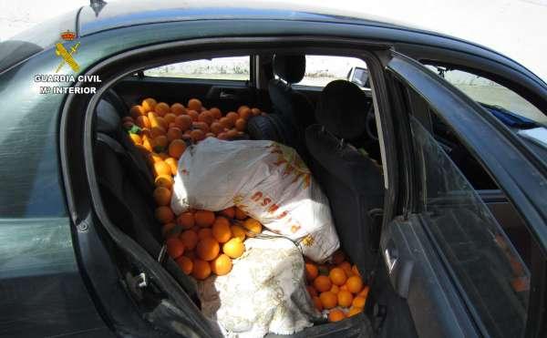 Sucesos.- Investigan a siete personas tras intervenir 700 kilos de naranjas en Gibraleón