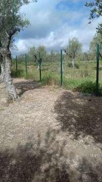 Sucesos.- Roban 18 metros de reja metálica y dos puertas en un parque público de Espartinas