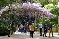Turismo.- El Jardín Botánico de La Concepción se suma a la oferta de la tarjeta turística Málaga Pass