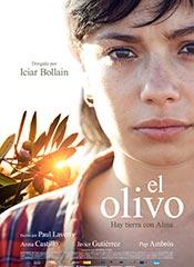 El olivo - Cartel