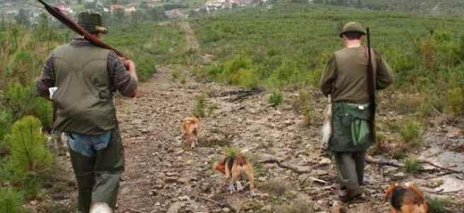 Cazadores con sus armas y sus perros