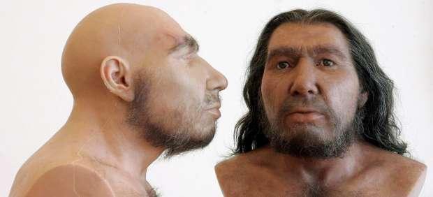 Expertos piden que deje de usarse la palabra Neandertal como un insulto lleno de prejuicios